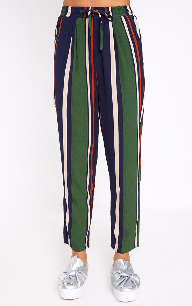 Navy Stripe Casual Trousers 2