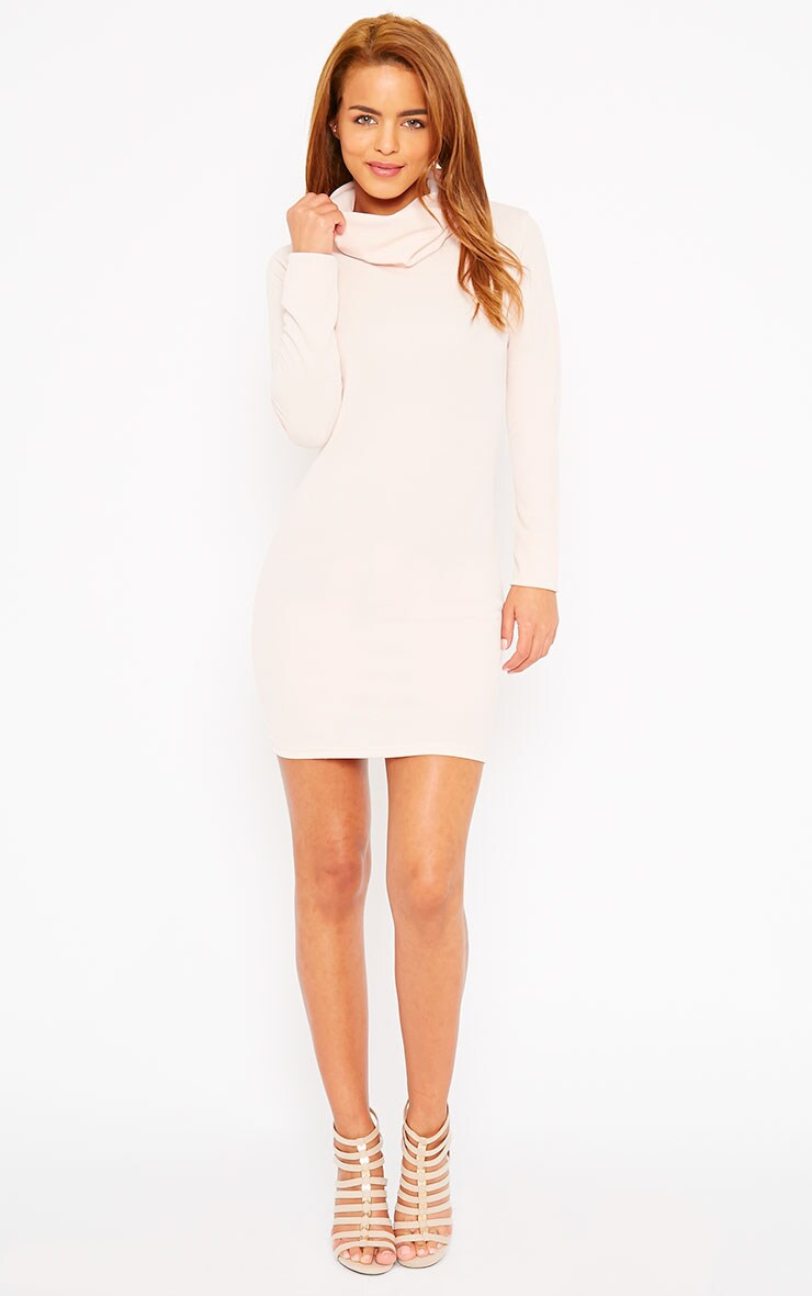 Catrina Nude Roll Neck Dress 3