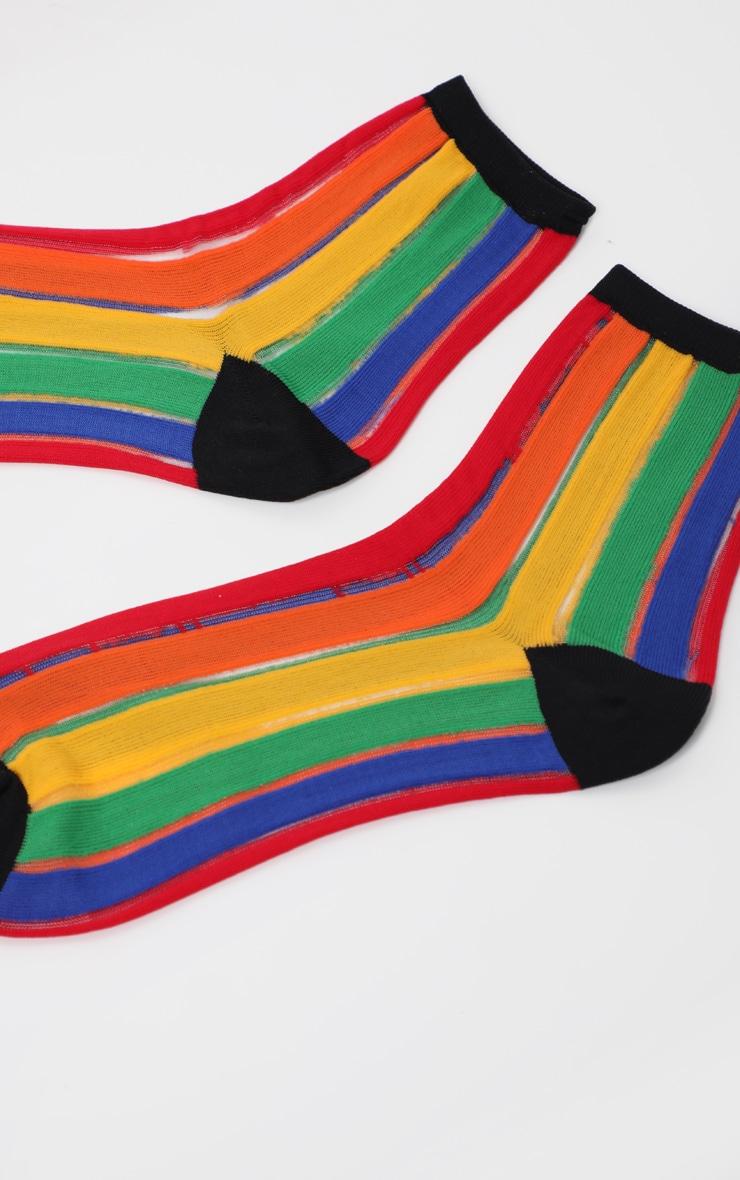 Multi Rainbow Socks  1