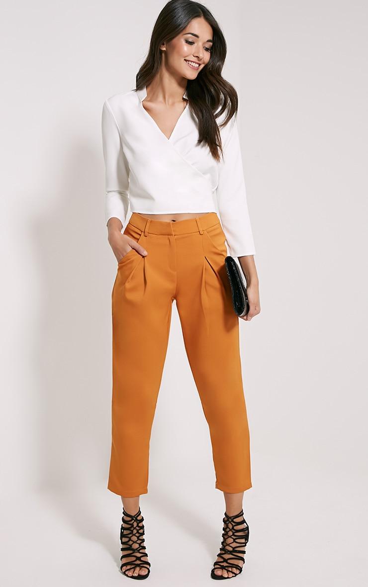 Matilda Burnt Orange Premium Tailored Trousers 1