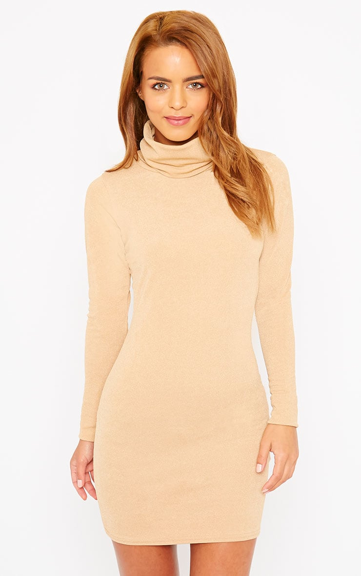 Catrina Camel Roll Neck Dress 1