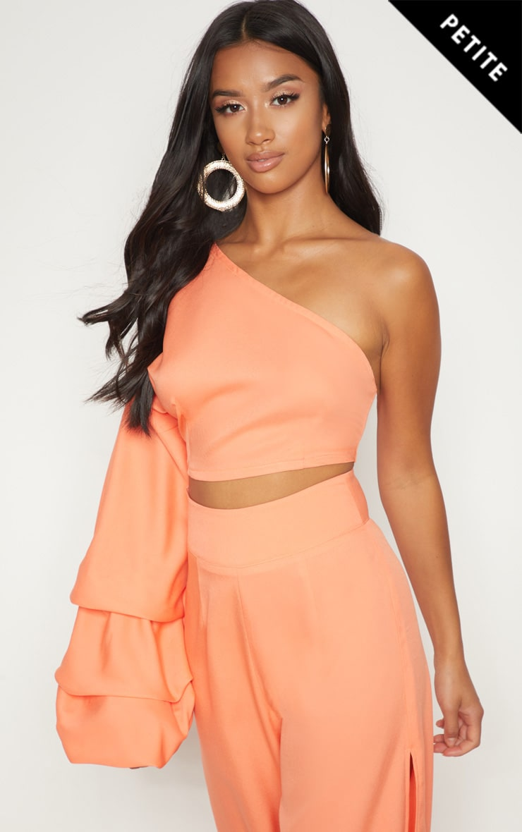 Petite Coral Asymmetric Ruffle Sleeve Crop Top