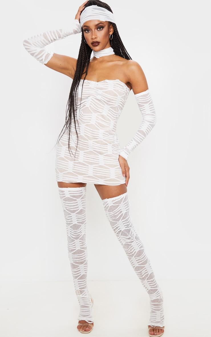 Premium Mummy Costume 1