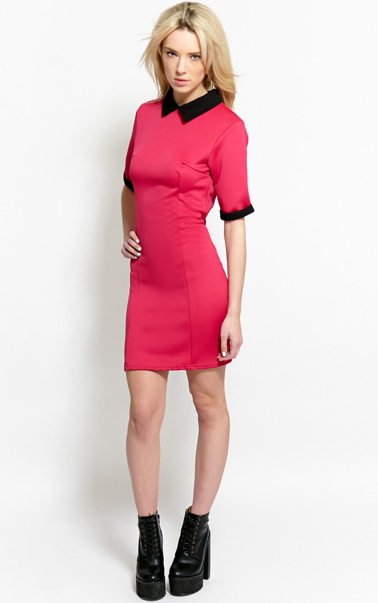 Katrina Fuchsia Collar Dress 3