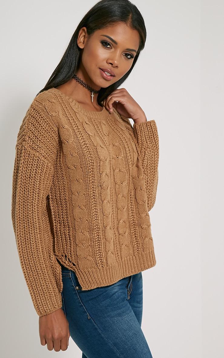 Jada Camel Knitted Jumper 4