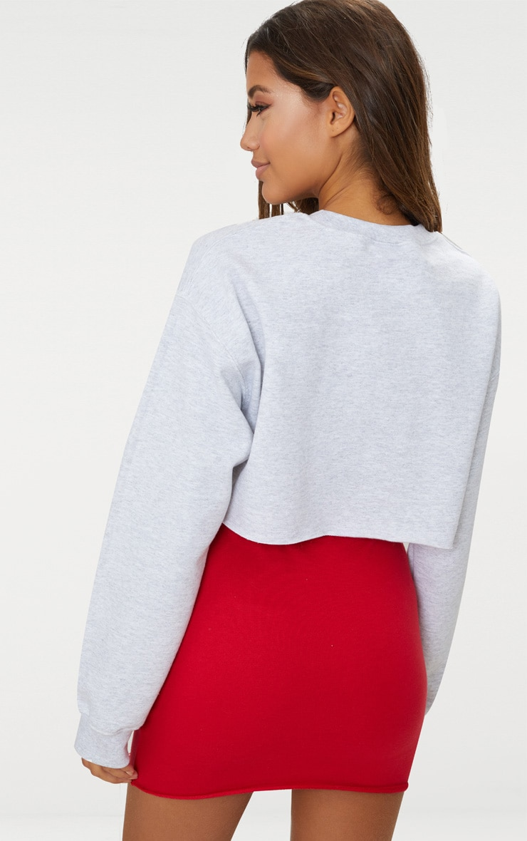 Grey Lamour Cropped Sweater  2