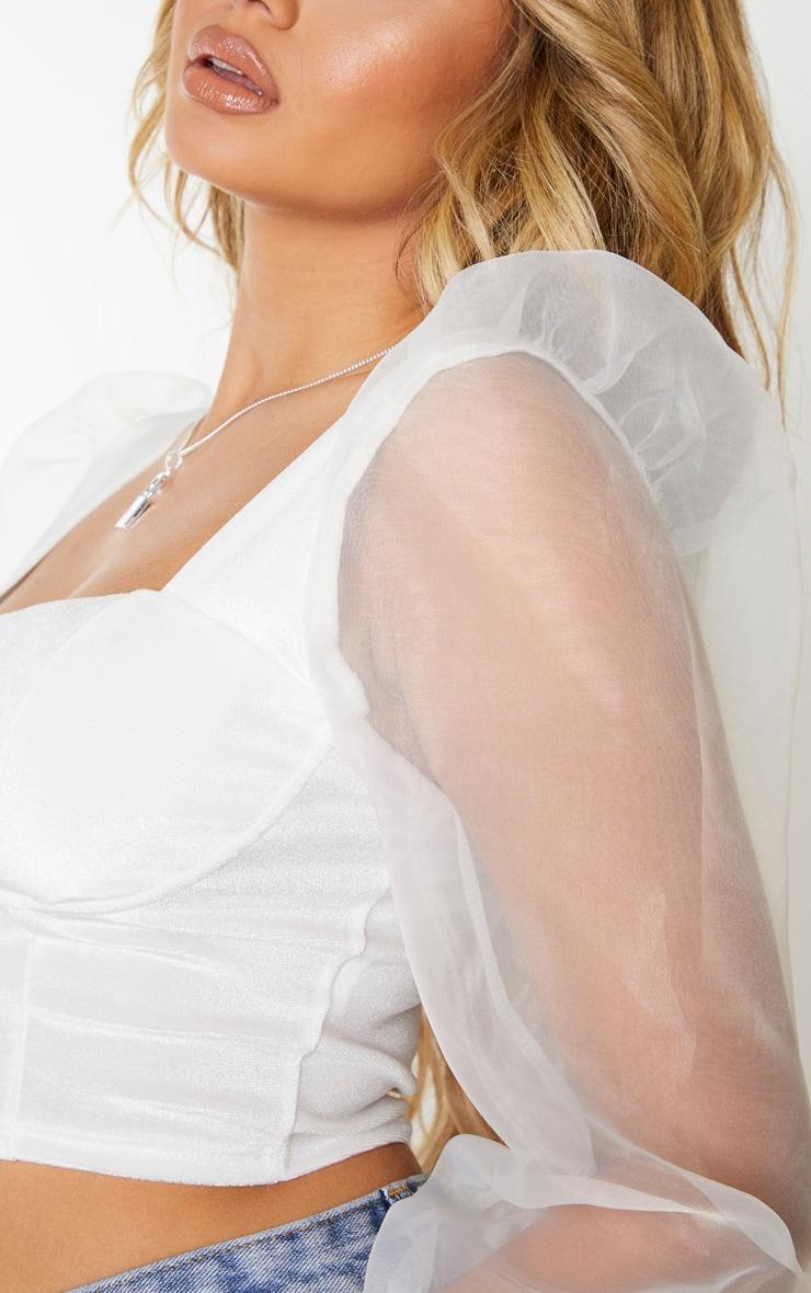 White Sheer Puff Sleeve Velvet Bodice Crop Top 4