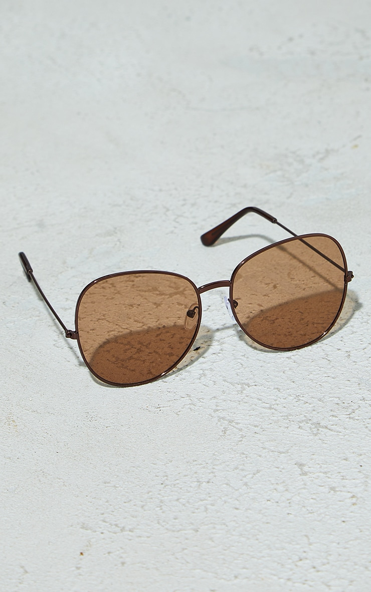 Brown Lens Oversized Round Sunglasses 2