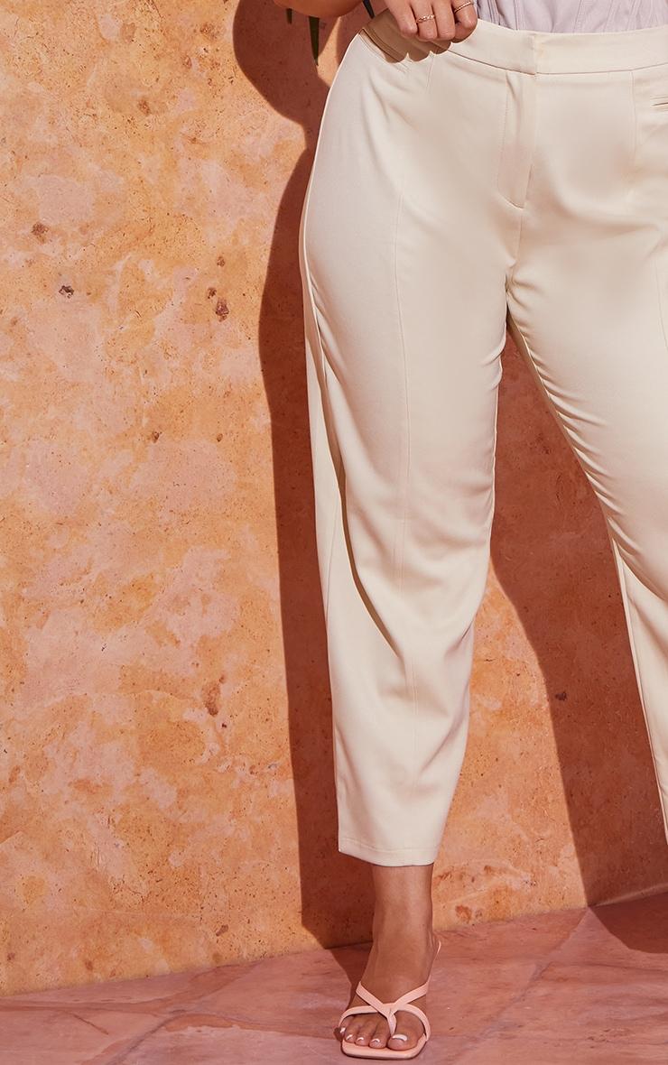 PLT Plus - Pantalon court gris pierre à coutures devant 4