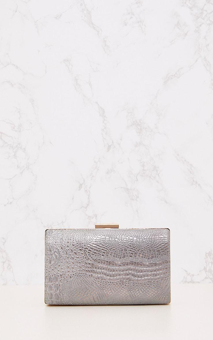 Silver Snakeskin Clutch Bag 2