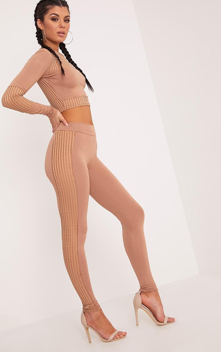 Wanita  Camel Fishnet Panel Leggings 1