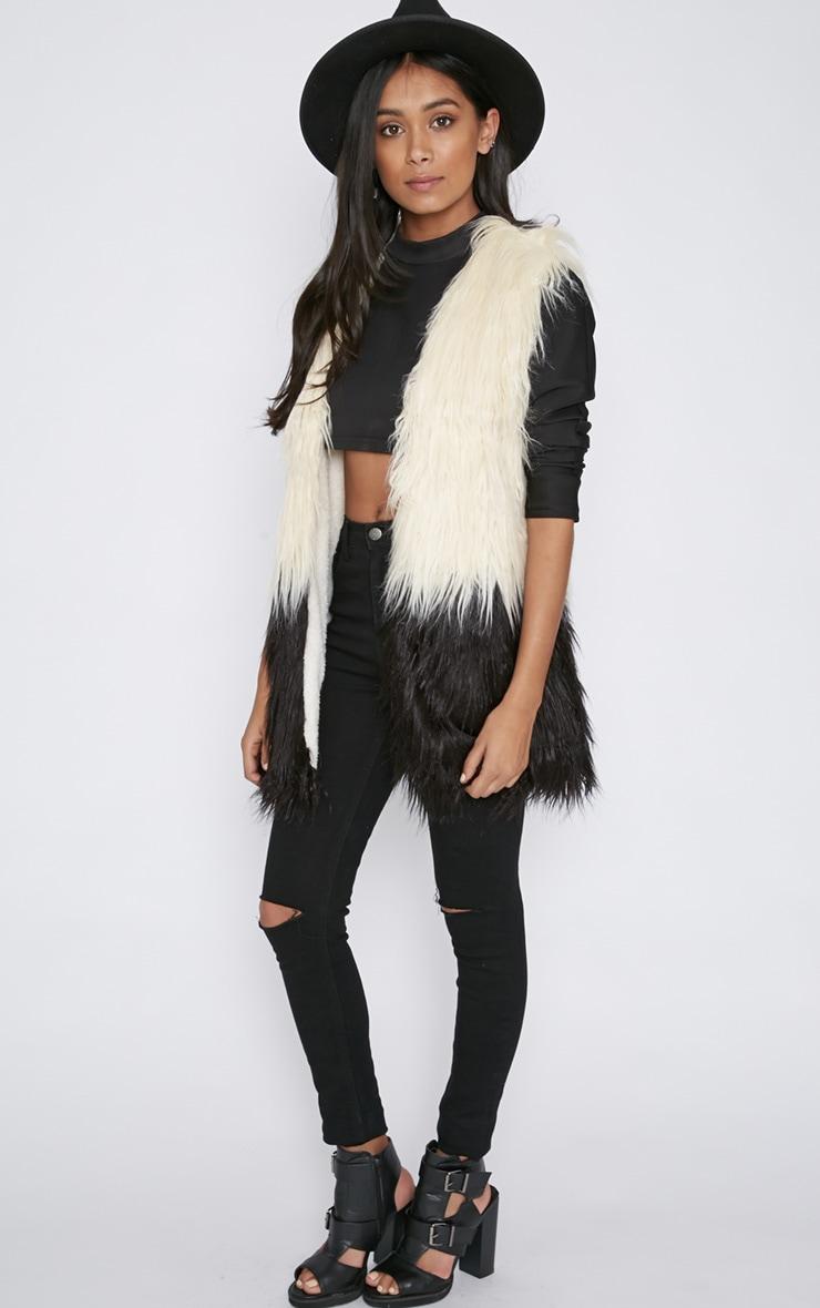 Alanis Dip Dyed Longline Fur Gilet  4