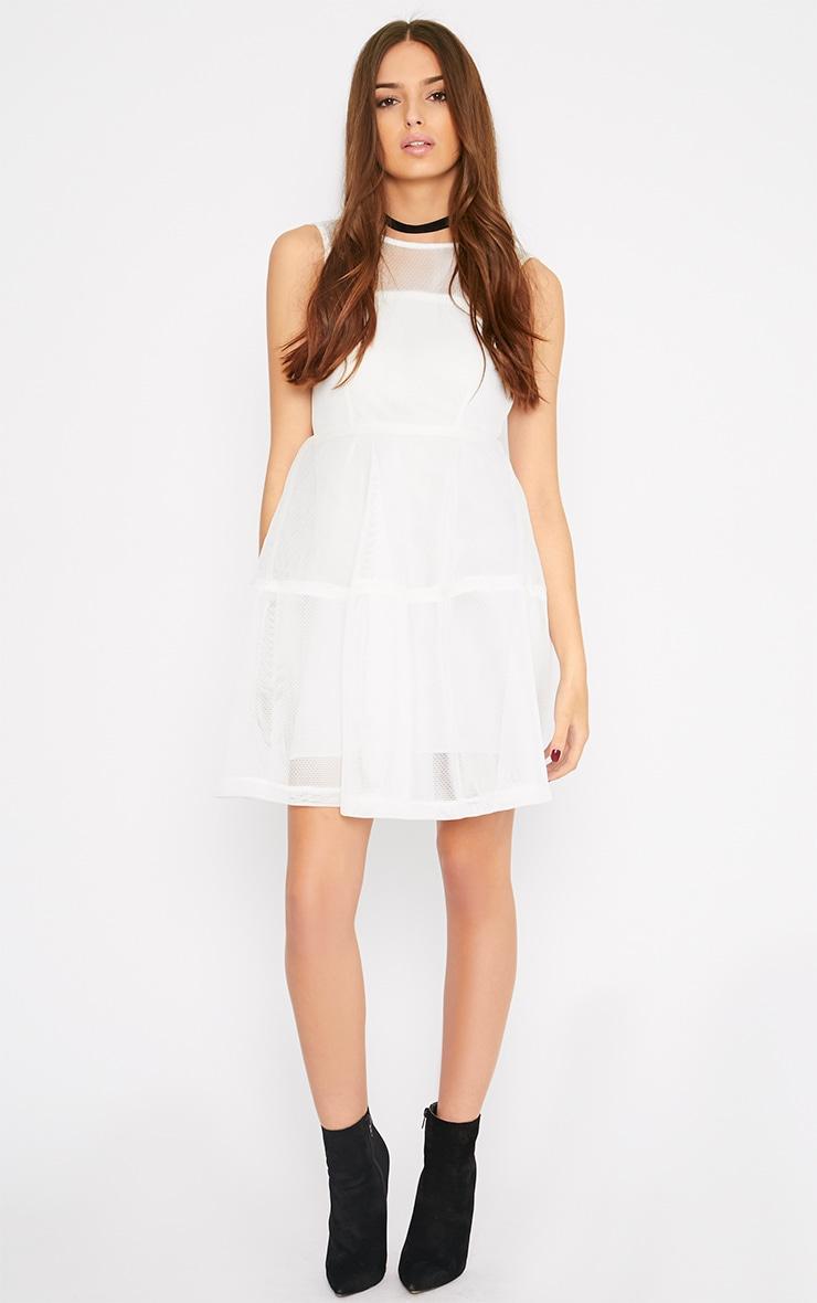 Hannie White Net Skater Dress 3