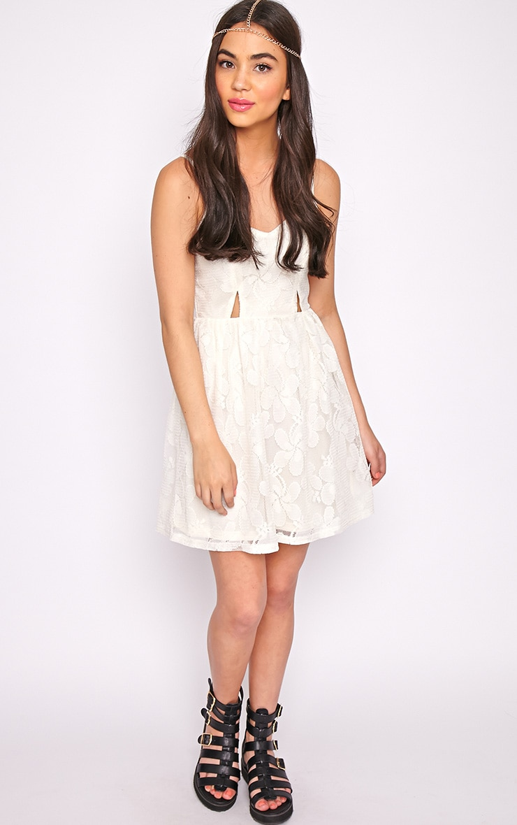 Lissy Cream Lace Skater Dress 3