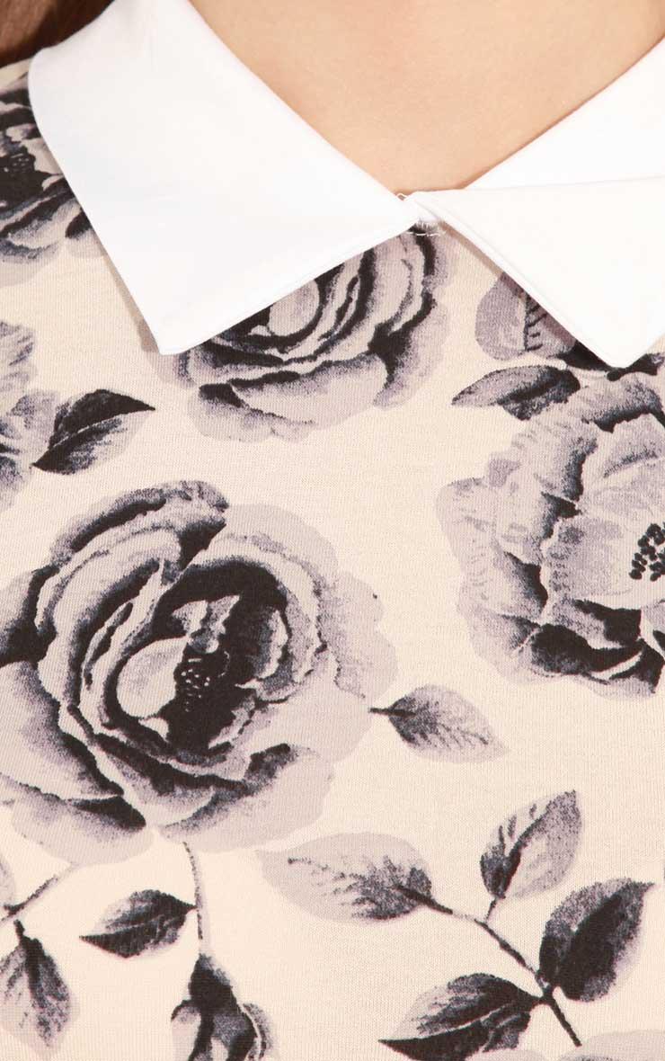 Demi Beige Floral Collar Dress 5