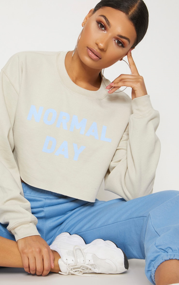 Sand Normal Day Slogan Crop Sweater 5