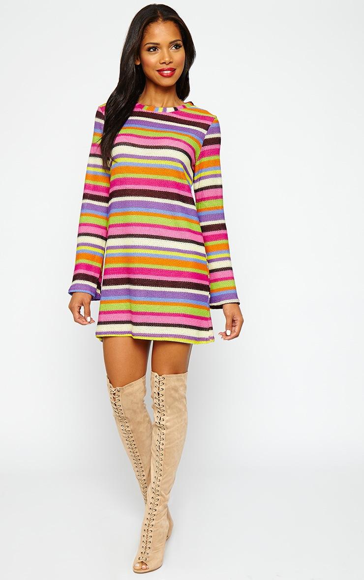 Misty Knitted Stripe Dress 3