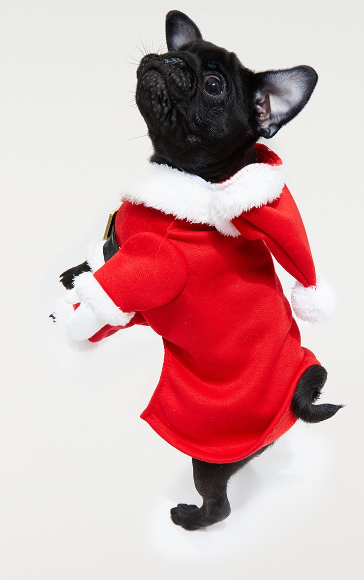 Red Santa Doggy Costume and Hat 3