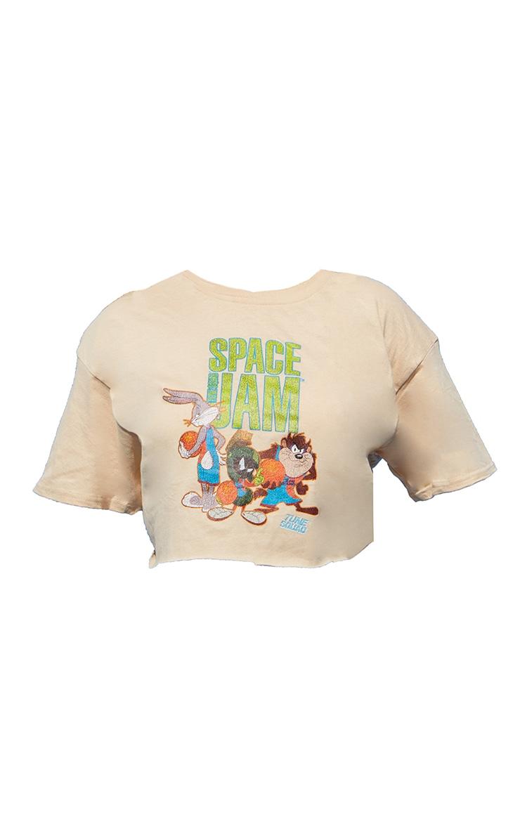 Plus Stone Space Jam Crop T- Shirt 5
