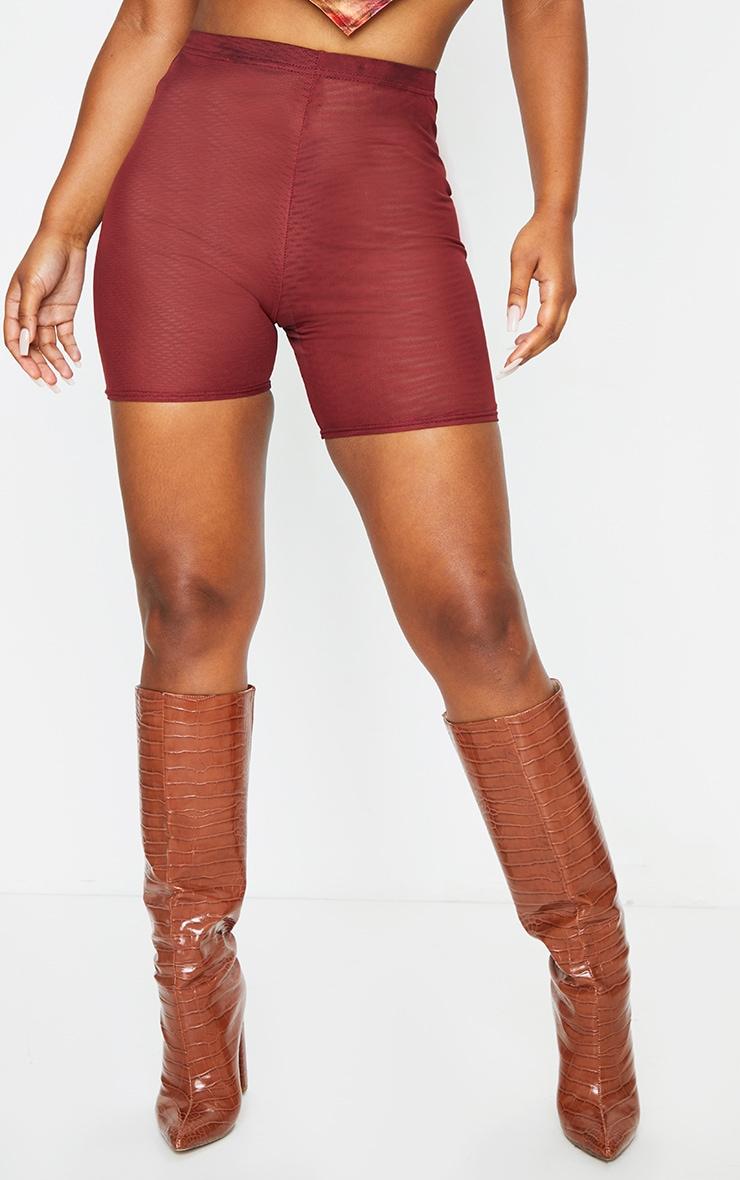 Chocolate Mesh Layer Cycle Shorts 2