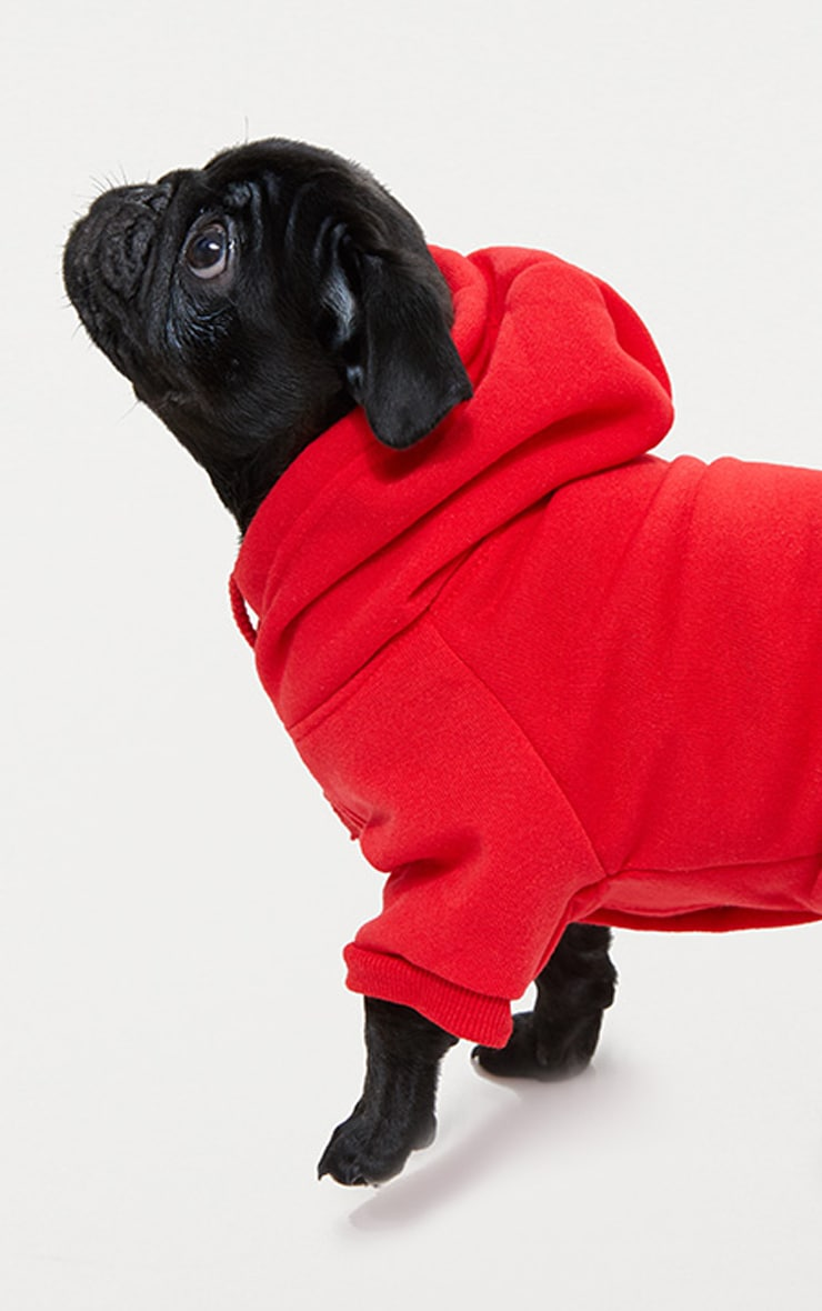 Red Doggy Hoodie  3