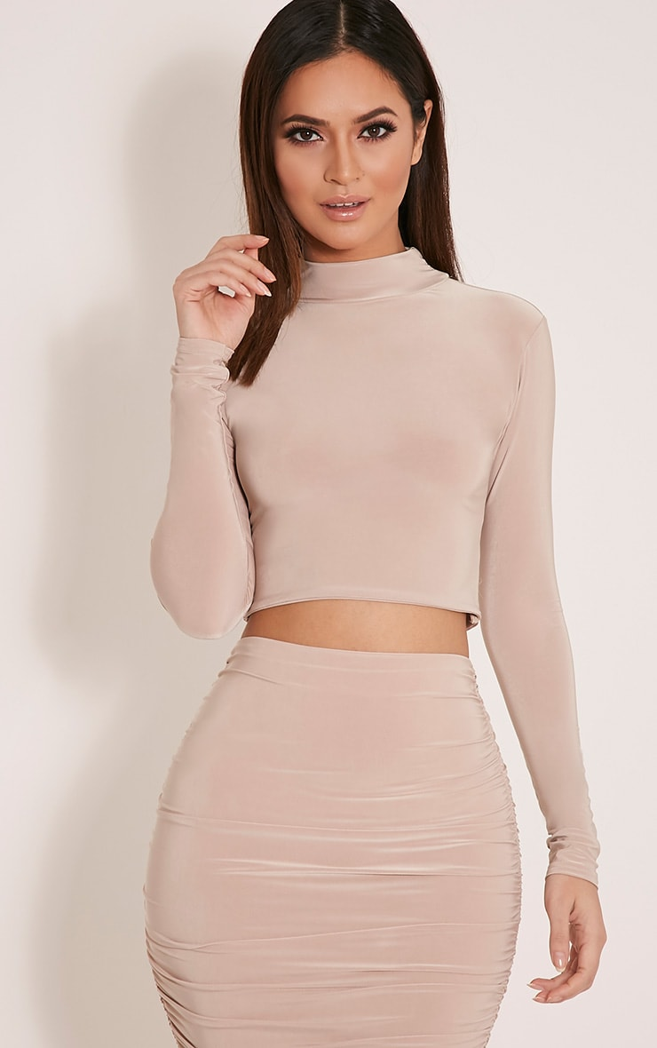 Saylor Stone Slinky Turtle Neck Crop Top 1