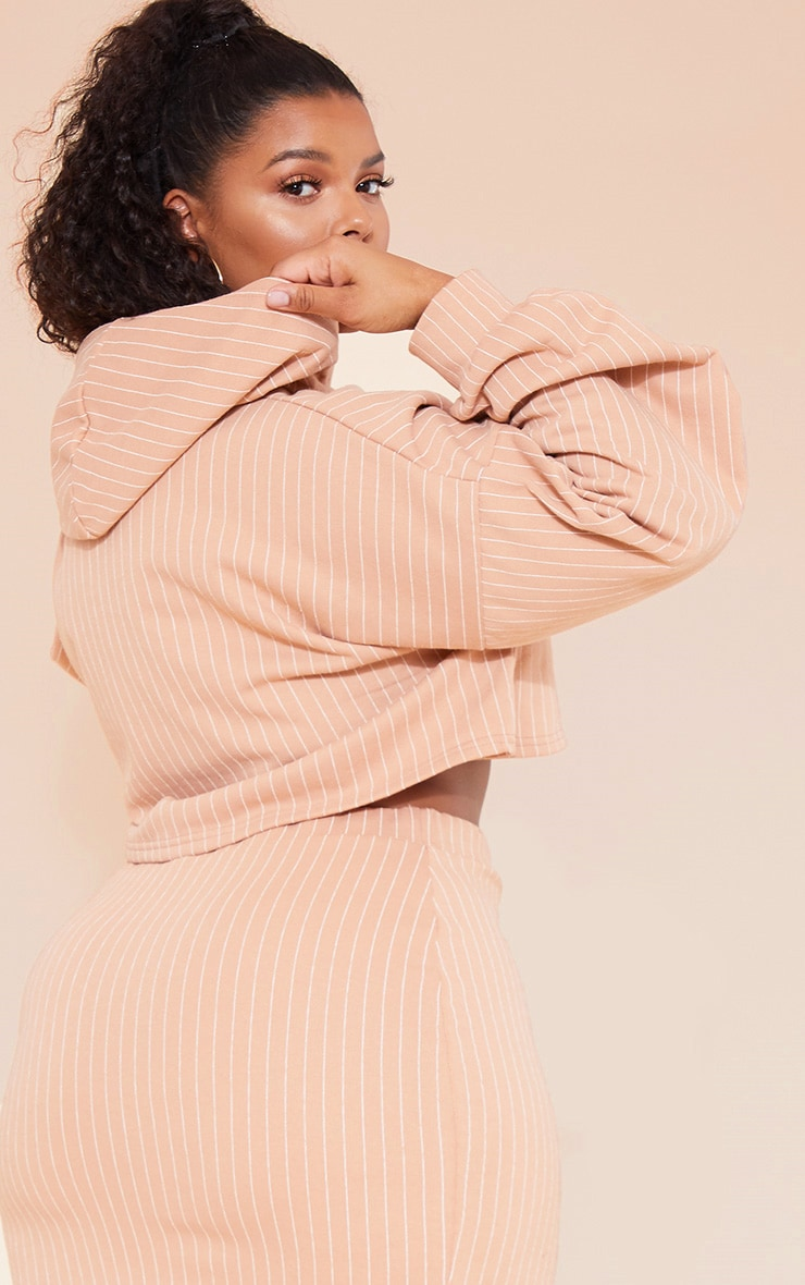 RECYCLED Plus Pale Tan Pinstripe Crop Hoodie 6