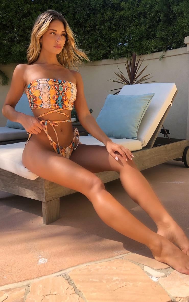 Multi Snake Print Tie Side Bikini Bottom 4