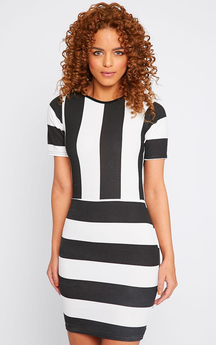 Tiffany Monochrome Stripe Mini Dress 1