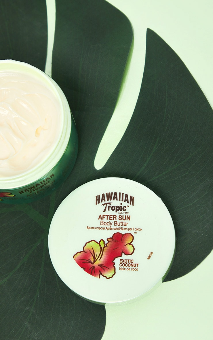 Hawaiian Tropic Exotic Coconut After Sun Body Butter 1