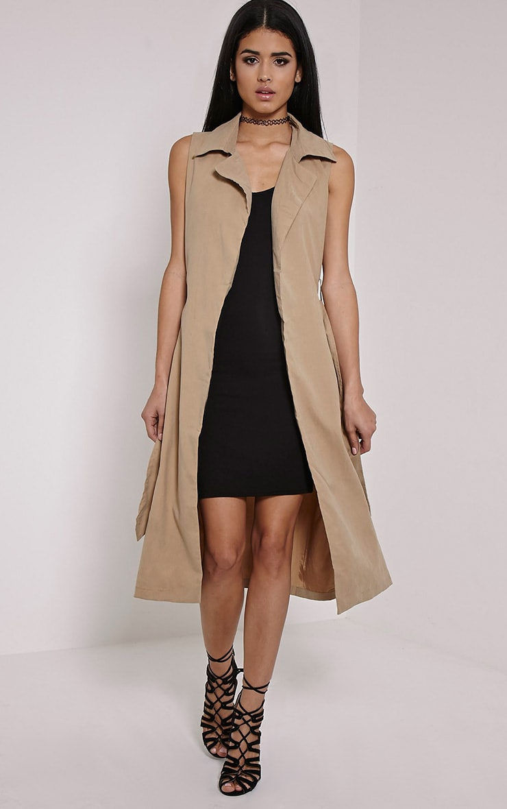 Carter Stone Sleeveless Trench 4