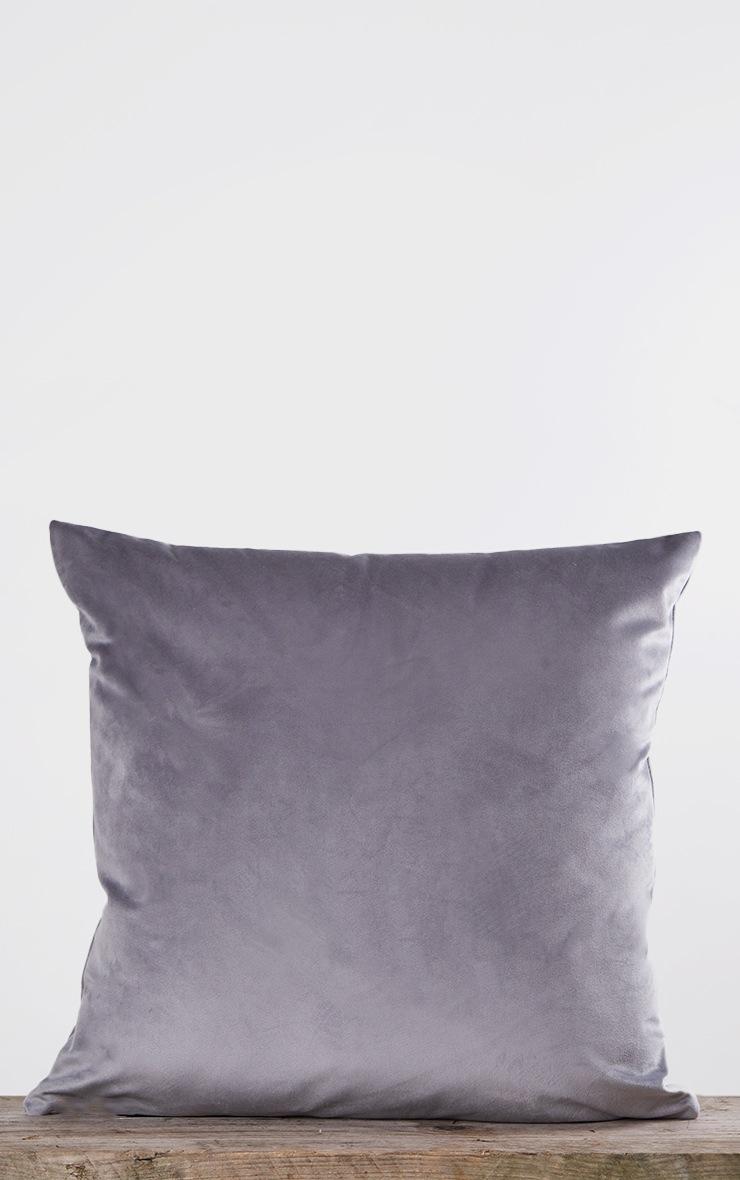 Grey Velvet Filled Cushion 3
