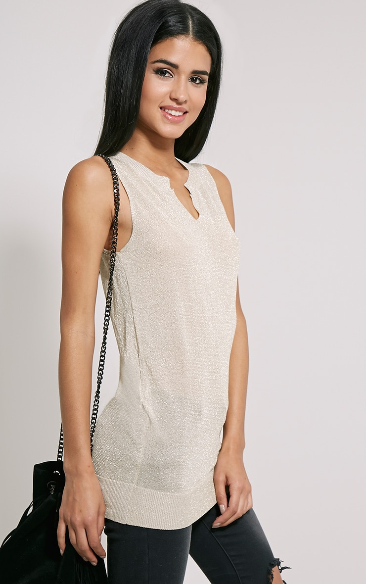 Ceara Taupe Sleeveless Metalic Knitted Vest 4