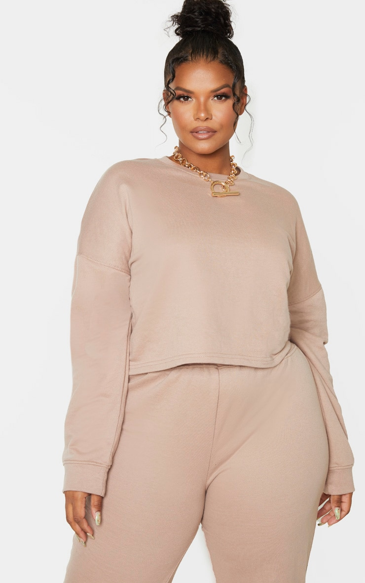 Plus Stone Sweat Round Neck Cropped Jumper 1