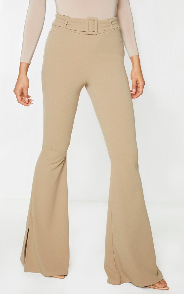 Tall Stone Crepe Belt Detail Pants 2