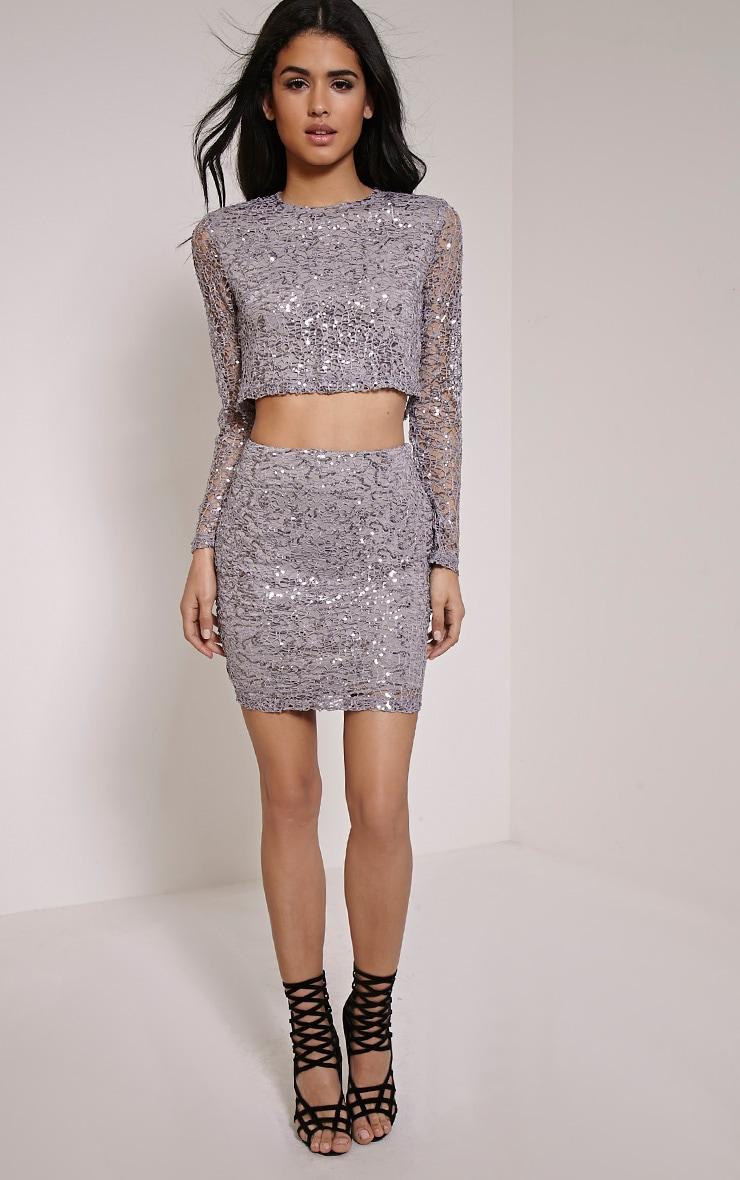 Lizzy Grey Sequin Crochet Long Sleeve Crop Top 3