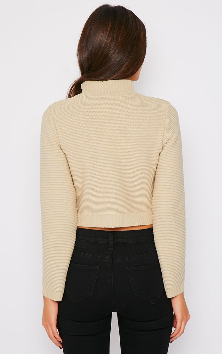 Jeanne Beige Ribbed Knit Turtle Neck Crop Jumper 2