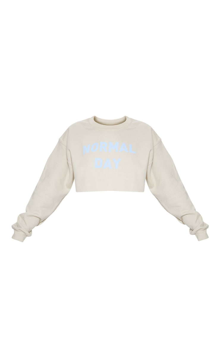 Sand Normal Day Slogan Crop Sweater 3