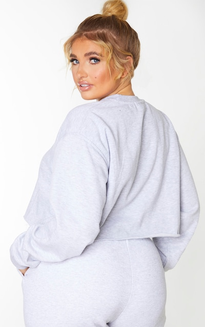 Plus Grey Ultimate Cropped Sweater