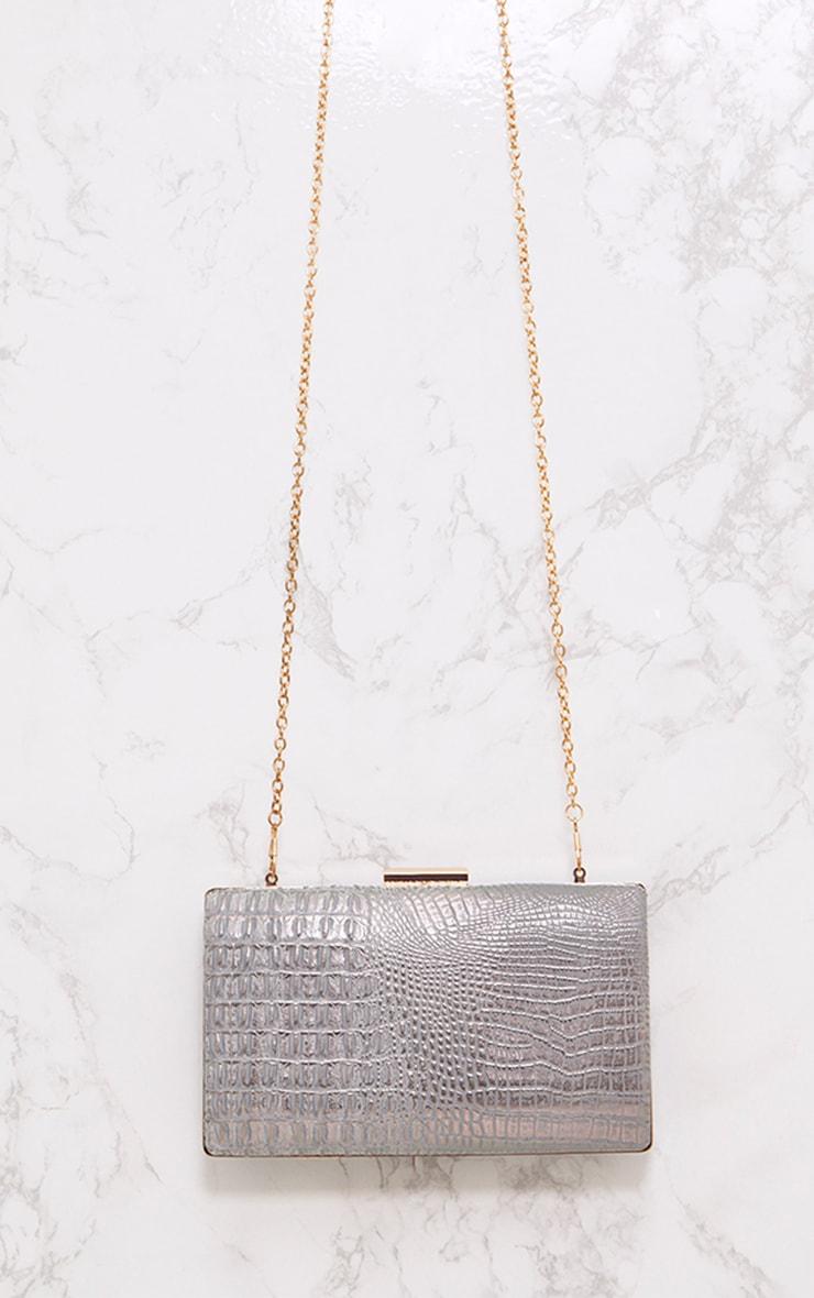 Silver Snakeskin Clutch Bag 3