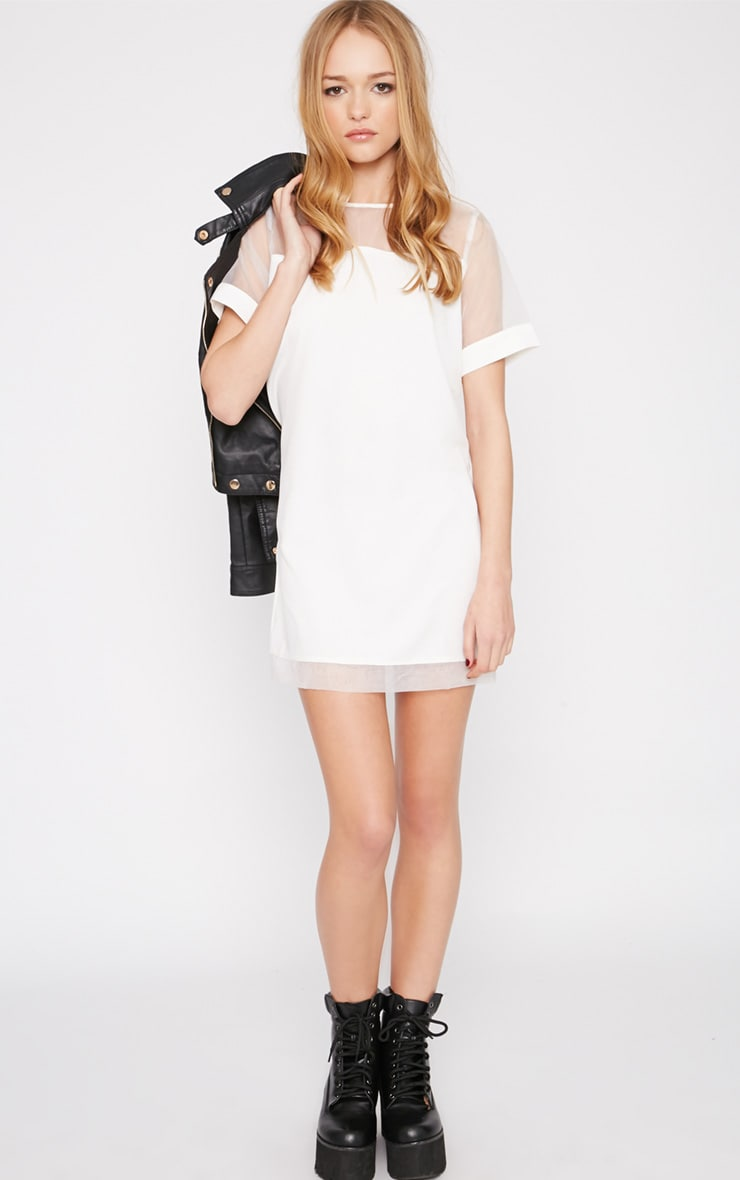 Brogan Cream Mesh Tshirt Dress  3
