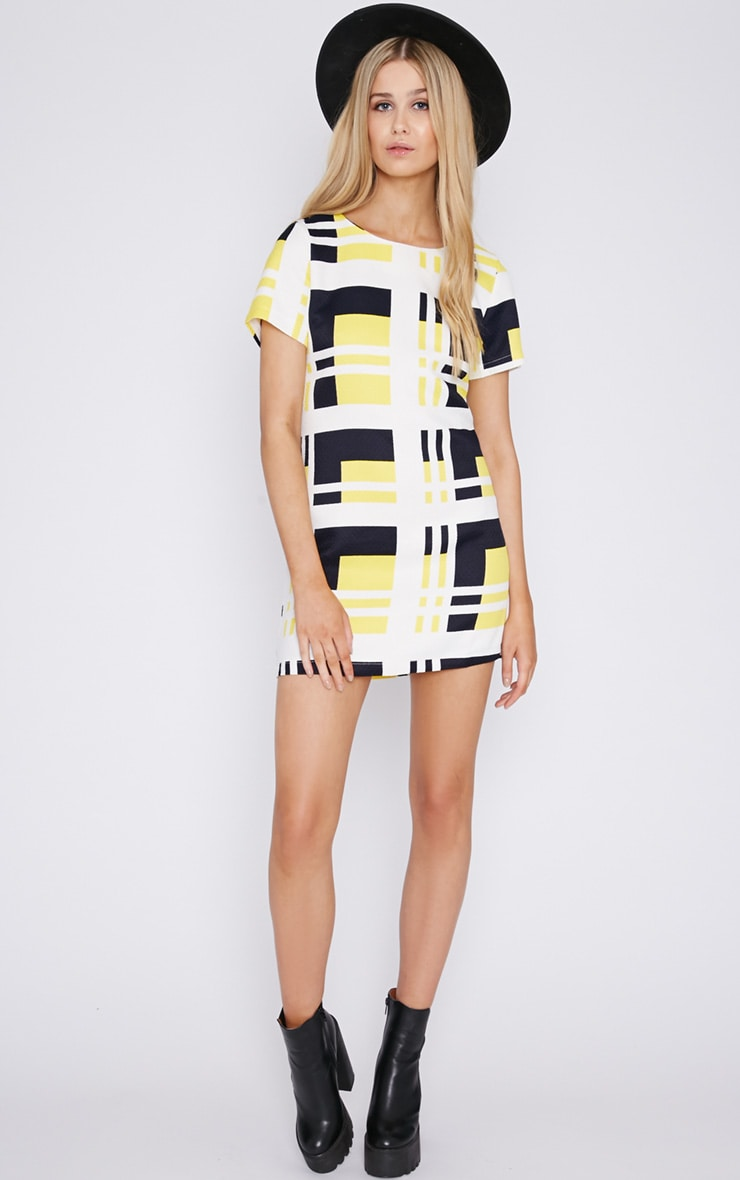 Karina Abstract Print Quilted Shift Dress 3
