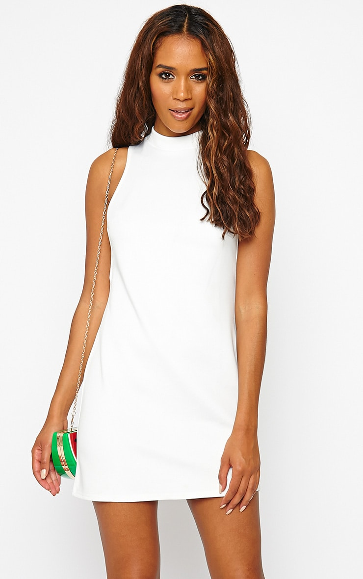 Janessa Cream Side Panel Shift Dress 1