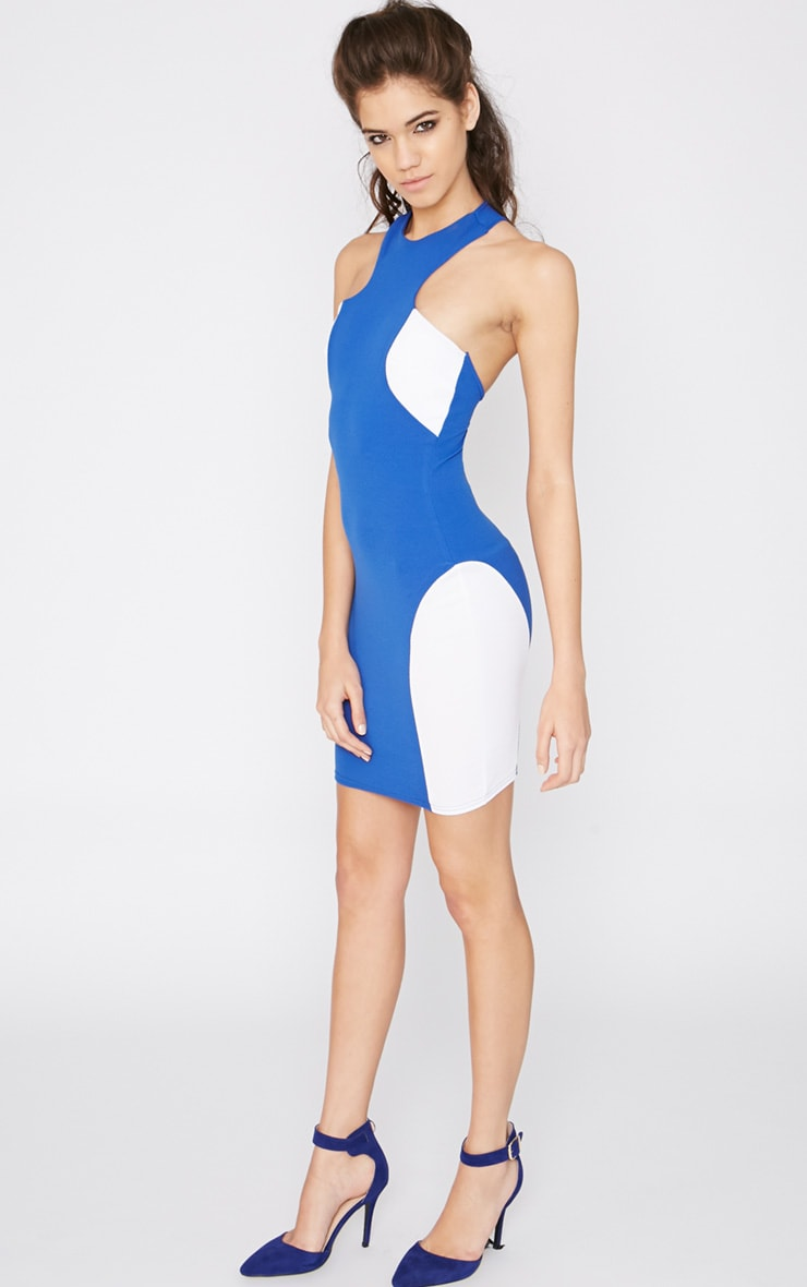 Saskia Cobalt Panel Dress 3
