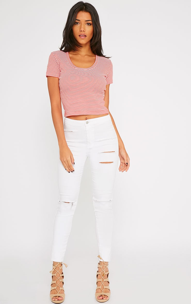 Bertie Red Stripe Crop Tee 3