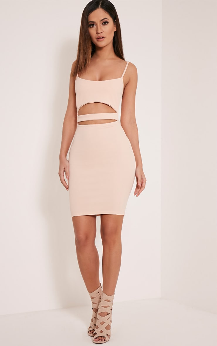Petite Roxanne Nude Cut Out Mini Dress 3