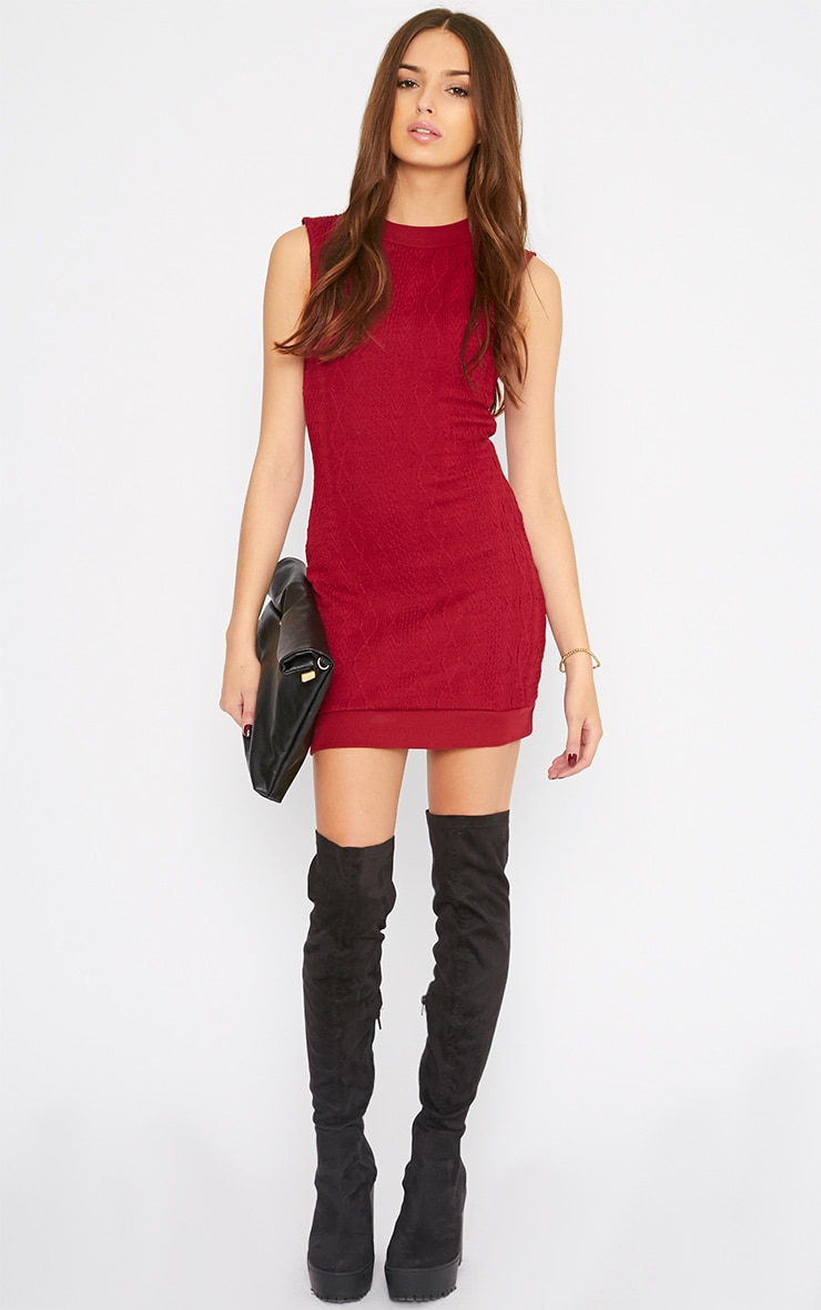 Darcie Red Cable Knit Textured Sleeveless Dress 3