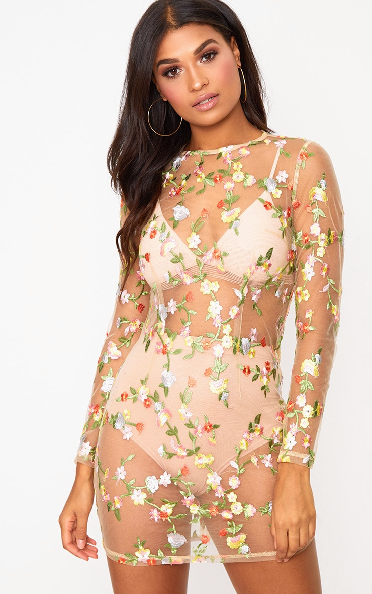 Nude Floral Embroidered Sheer Lace Bodycon Dress 1