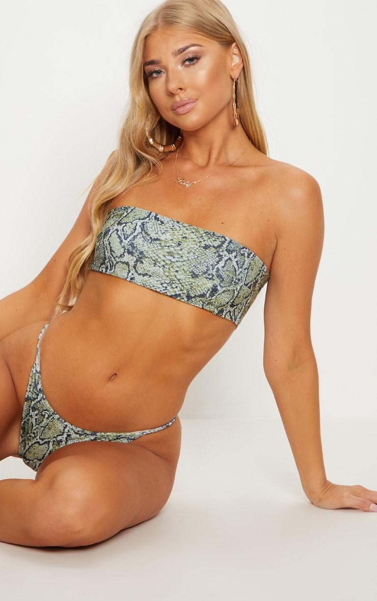 Green Snake Print Bandeau Bikini Top 1
