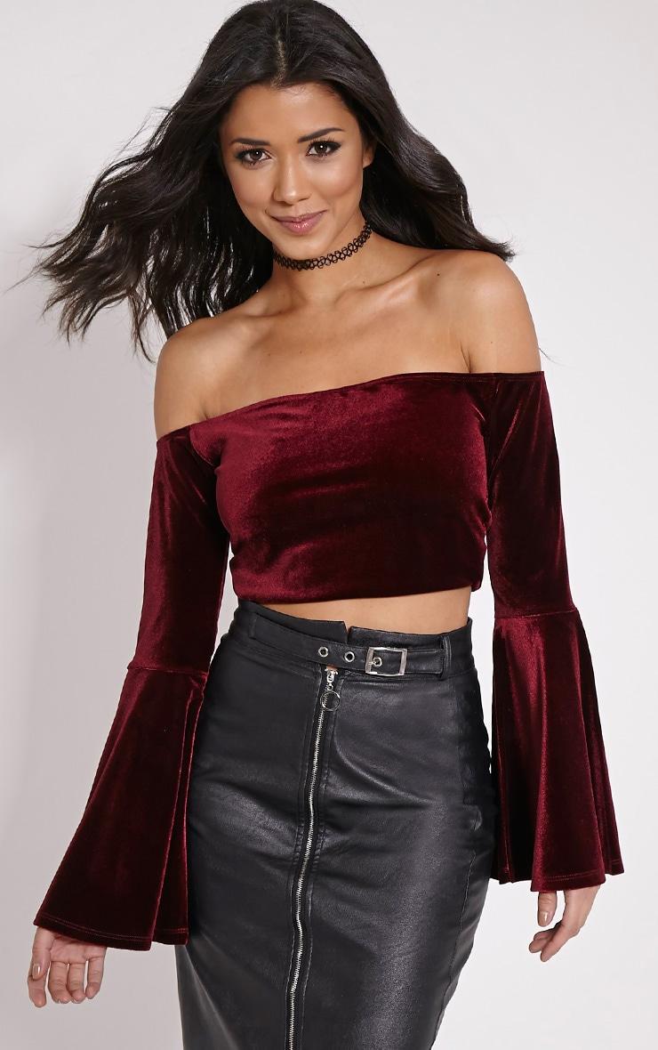 48bfbddb5c7d82 Lena Wine Velvet Bell Sleeve Bardot Crop Top | PrettyLittleThing